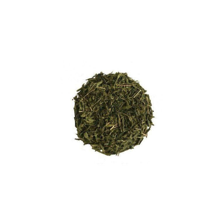 thé vert CBD bio